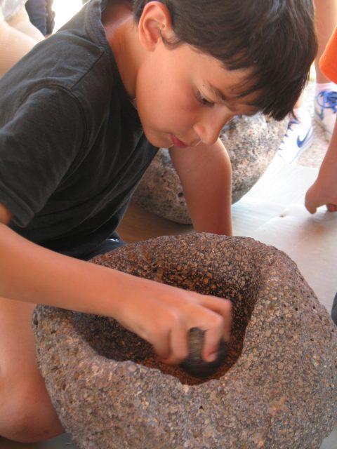 מהחיטה אל הלחם במוזיאון בעין דור